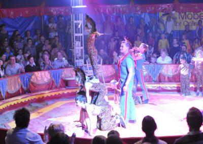 zirkus00084